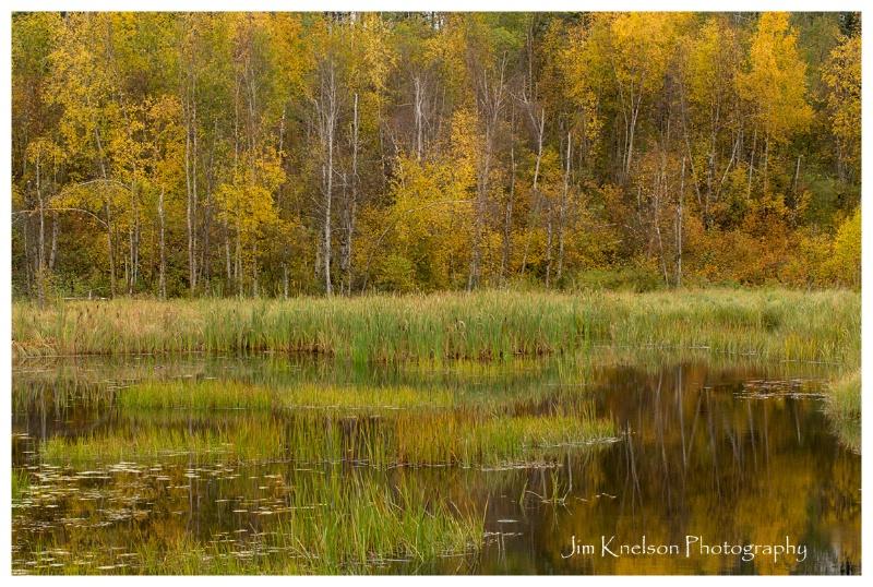 Autumn Prince Albert NP