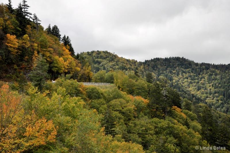 Autumn Makes an Entrance