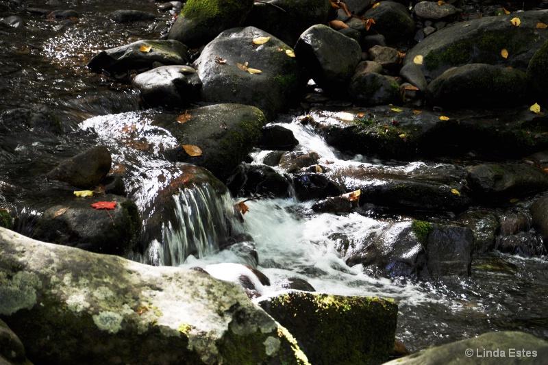 Roaring Stream in the Mountain