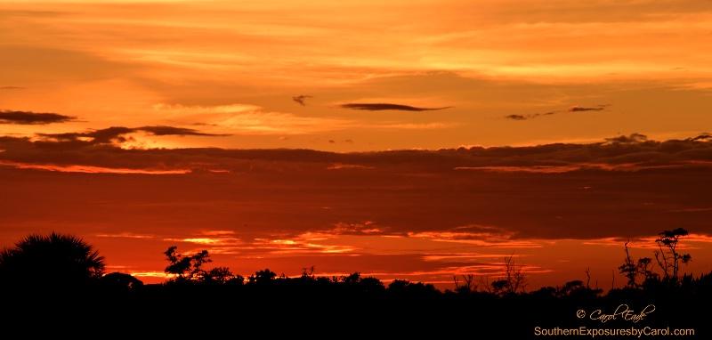 Juno Sunset