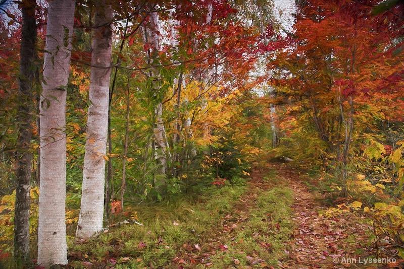 On an Autumn Walk