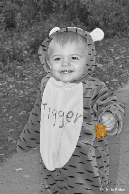Tigger Finds a Leaf
