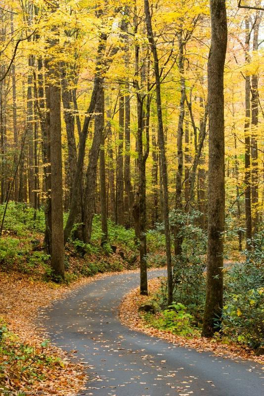 Motor Nature trail