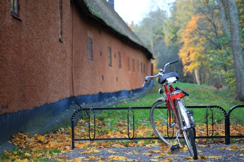Bicycle in Autumn