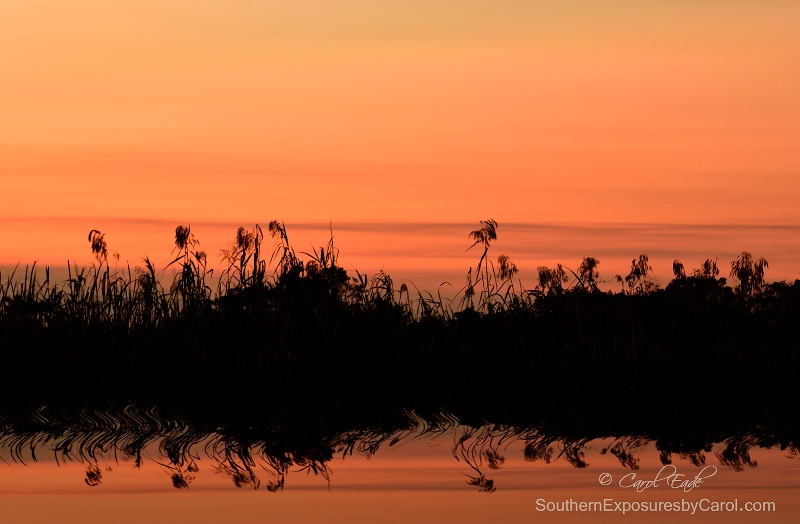 Autumn Sunset on the Everglades