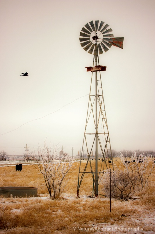 windmill in winter