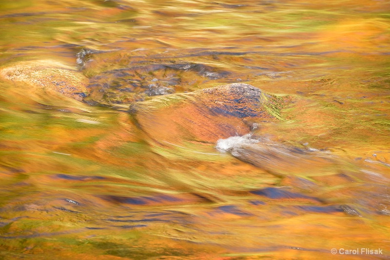 Golden Water with a Touch of Fall