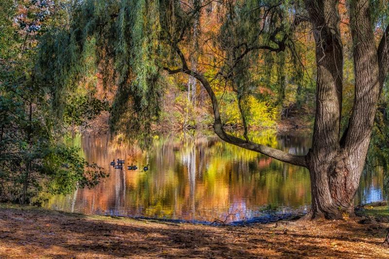 Autumn Hadeaway  5614