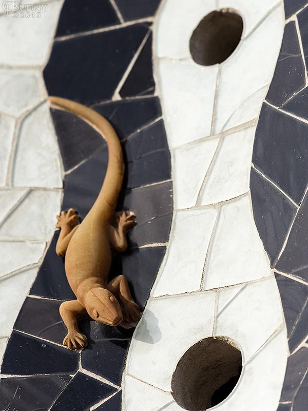 The Small Lizard