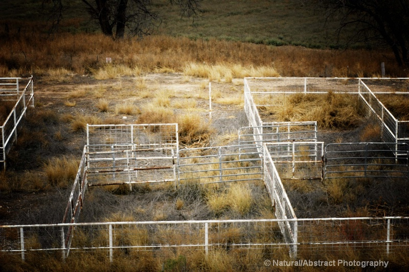 Abandoned Corrals