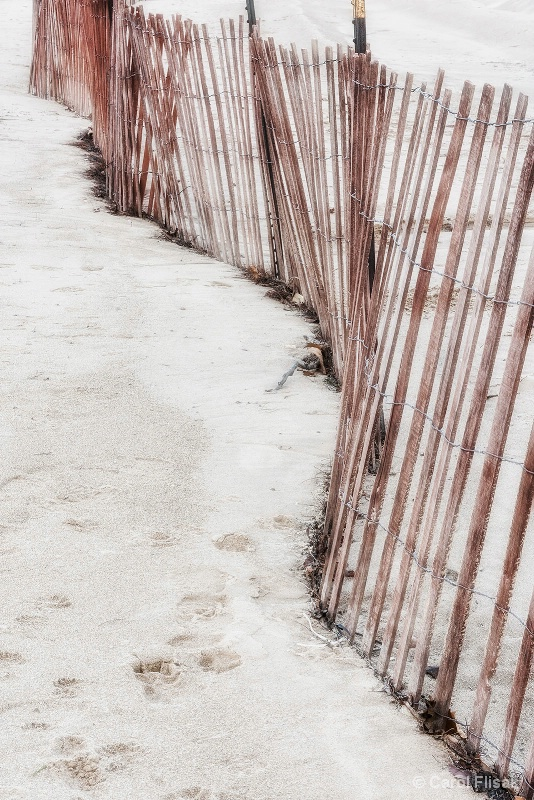 Snow Fences in the Sand