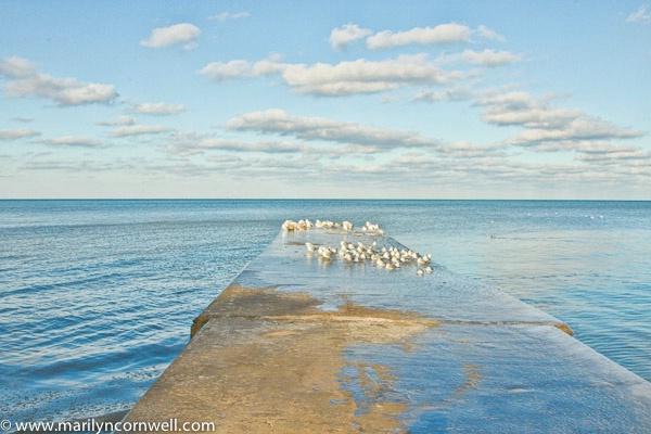 Grimsby Beach - Winter's Infinity Pool - II