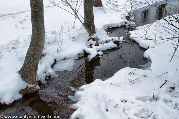 Creek in Black