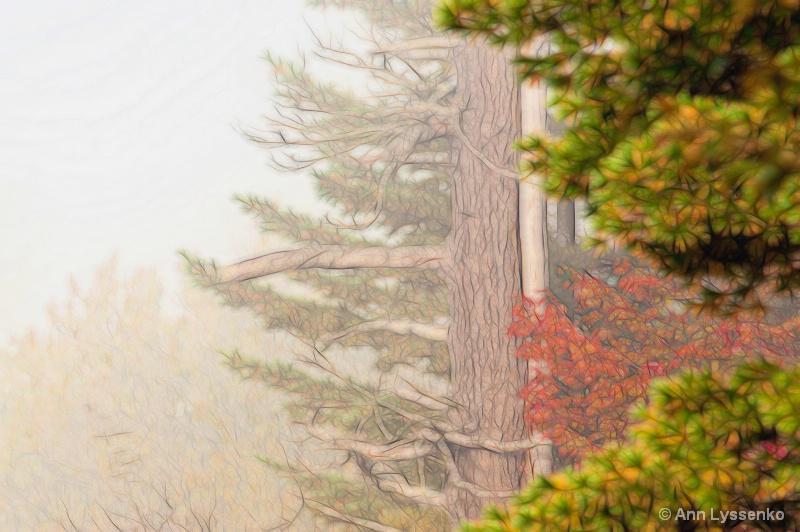 Fall Fog Fade