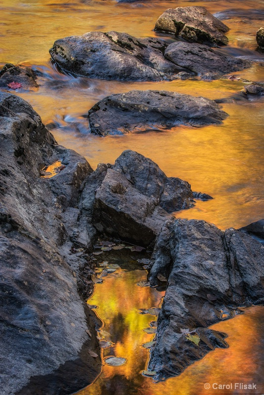 Golden Waters and Rocks
