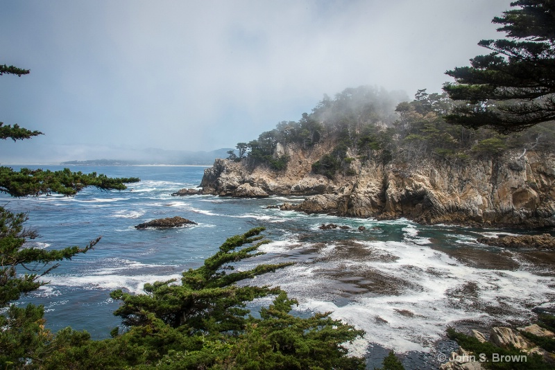 point lobos-9426