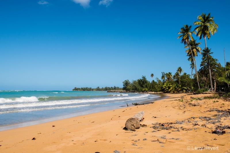 Beach Near San Juan, Puerto Rico