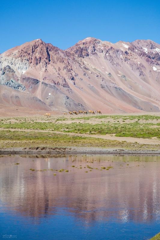 Laguna del Diamante