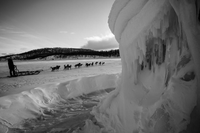Timeless Ice