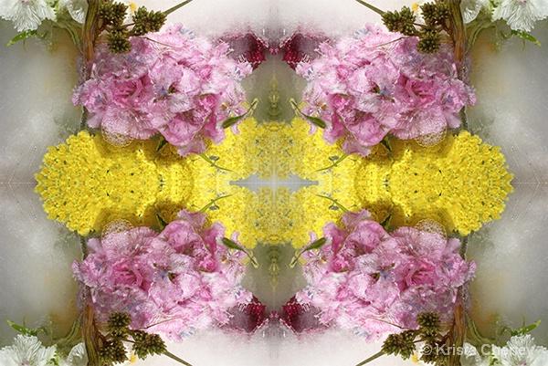 Yarrow & Sweet William in ice I—kaleidoscopic