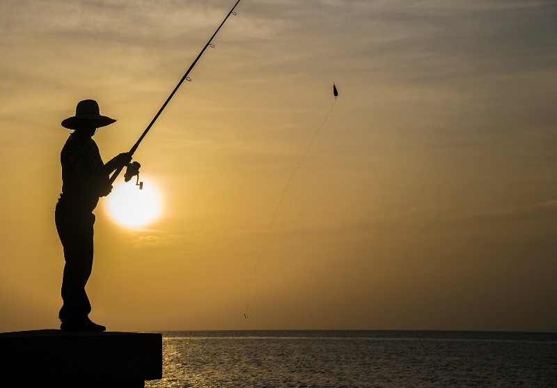 Silhouetted Fisherman