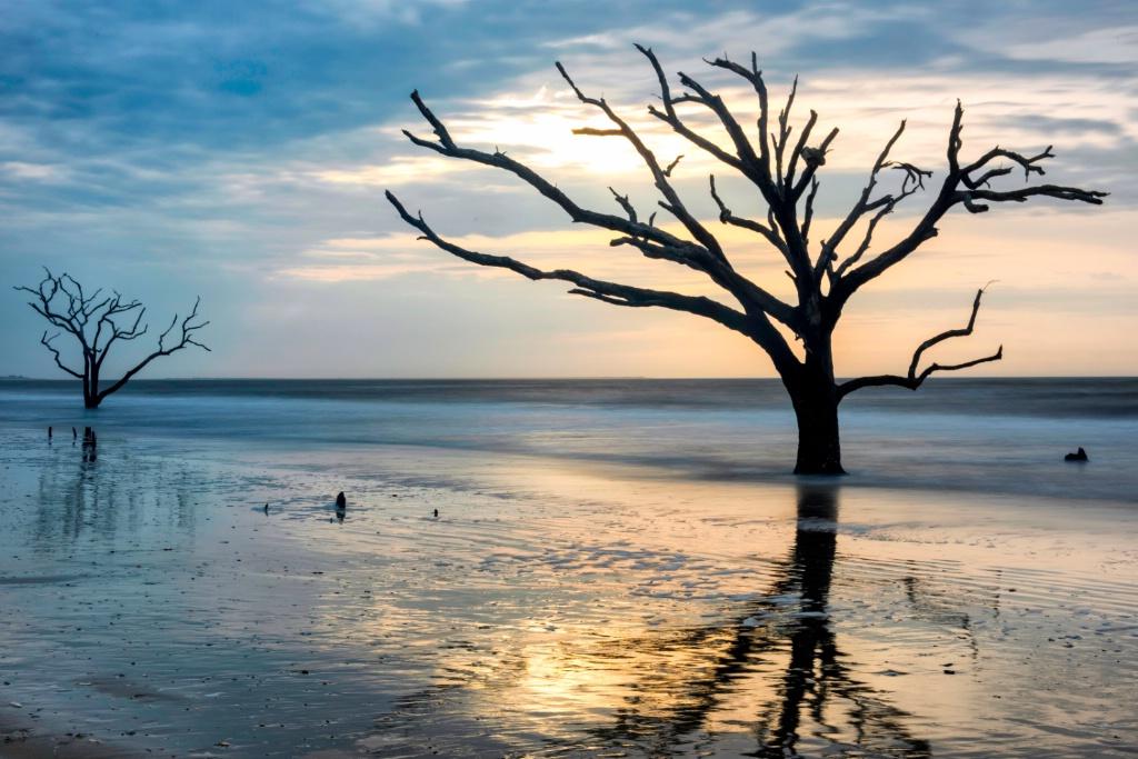 Reflections of Boneyard Beach