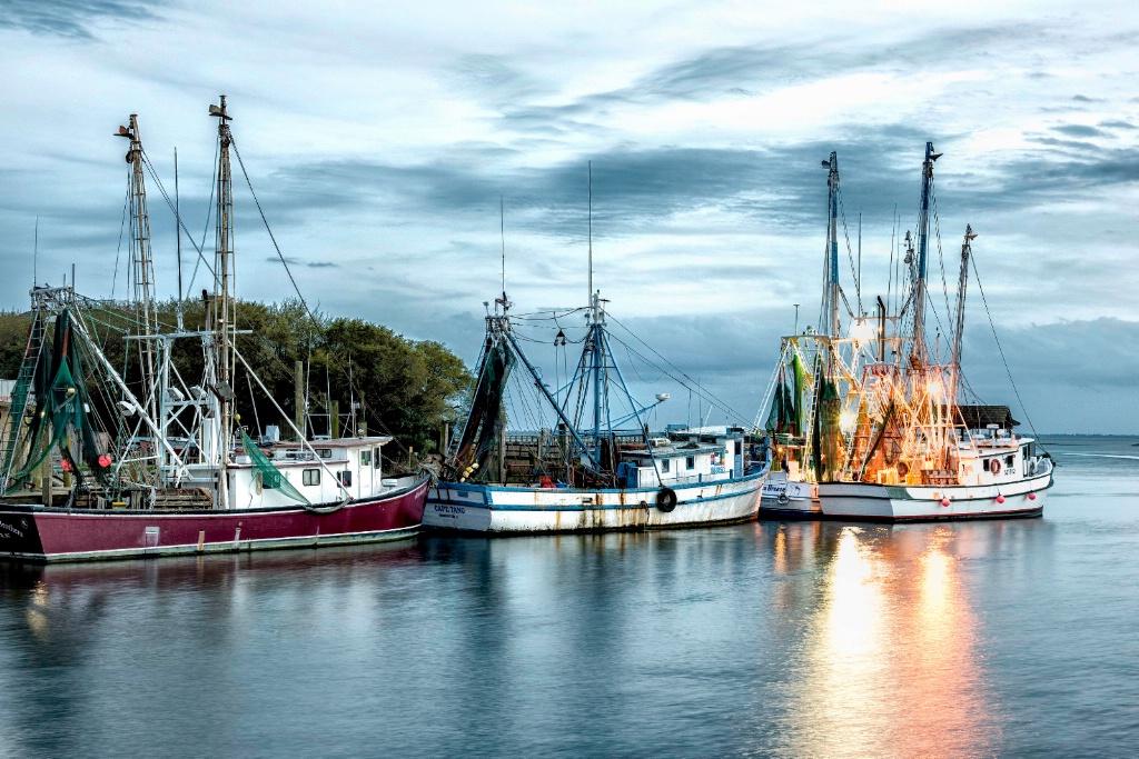 The Shrimping Fleet