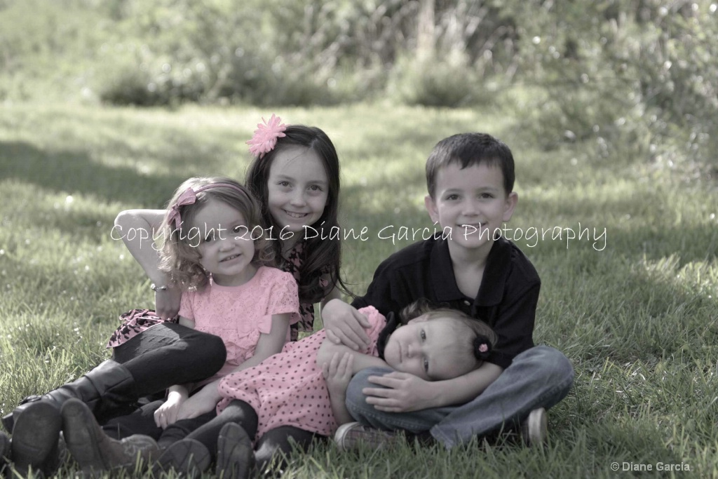Wilkinson Family 26