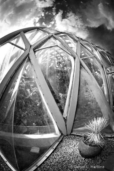 Botanic-Gardens-1
