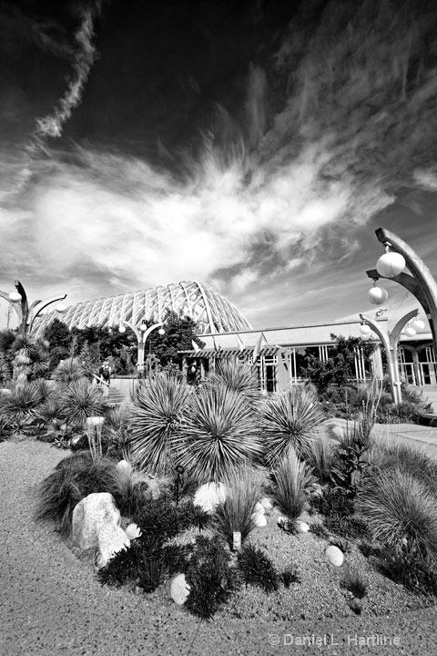 Botanic-Gardens-8