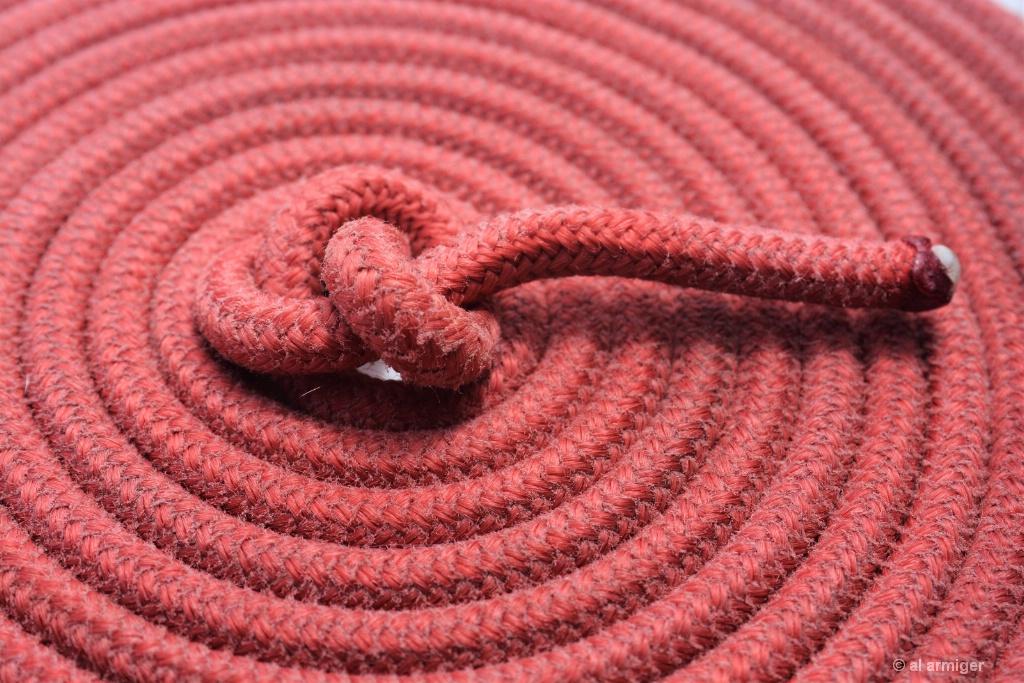 No 8 Knot & Coil DSC 6661 2.JPG