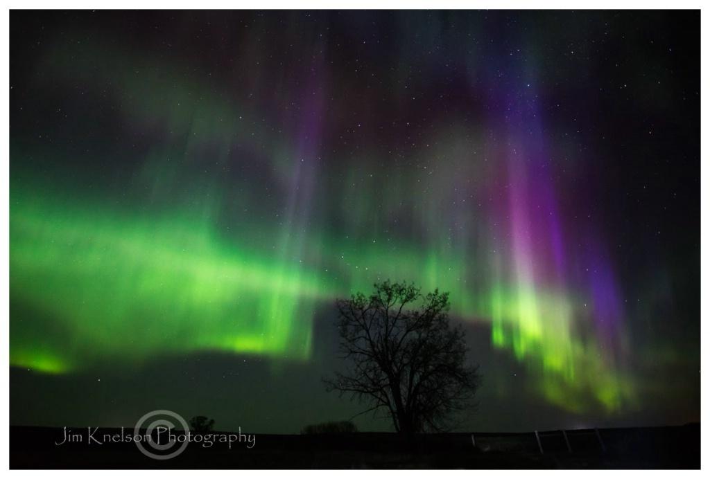Aurora Southern Alberta May 8th 2016