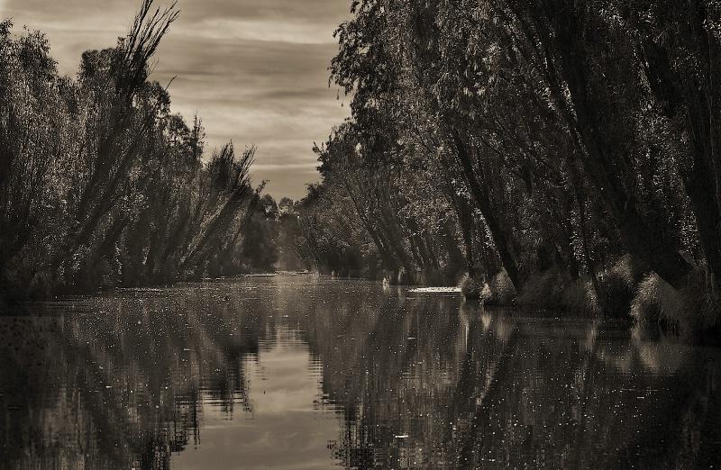 Xochimilco Canal in Sepia