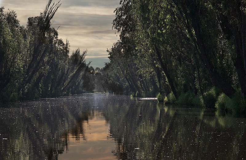 Xochimilco at Dawn
