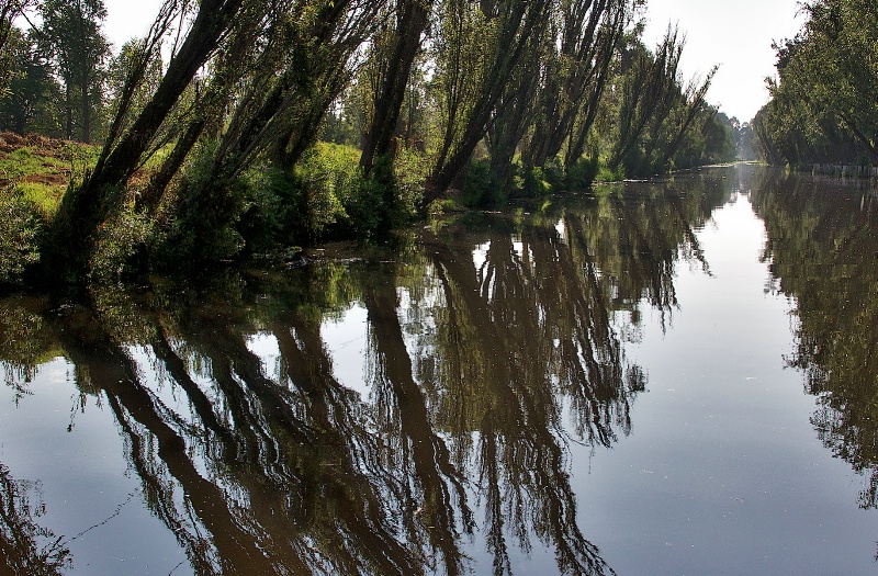 Xochimilco´s Beautiful Canal
