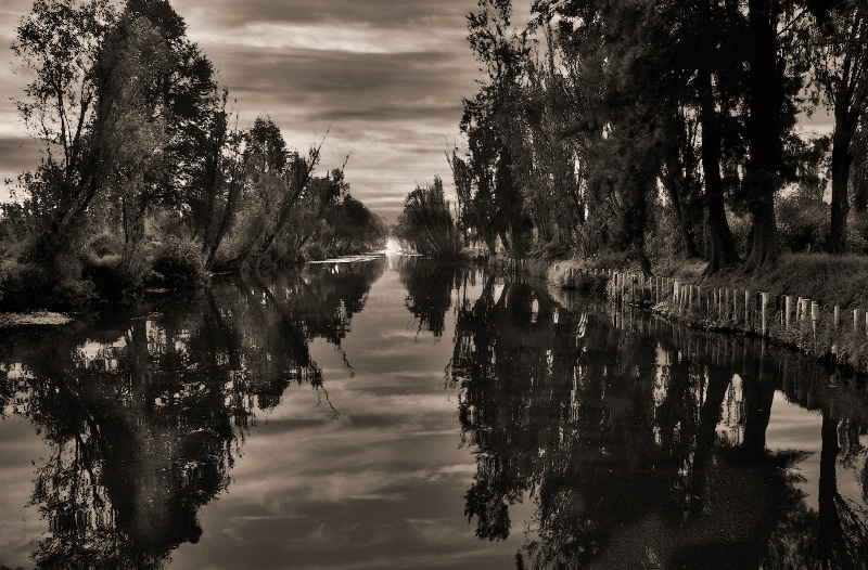 Xochimilco canal in the Morning Sepia