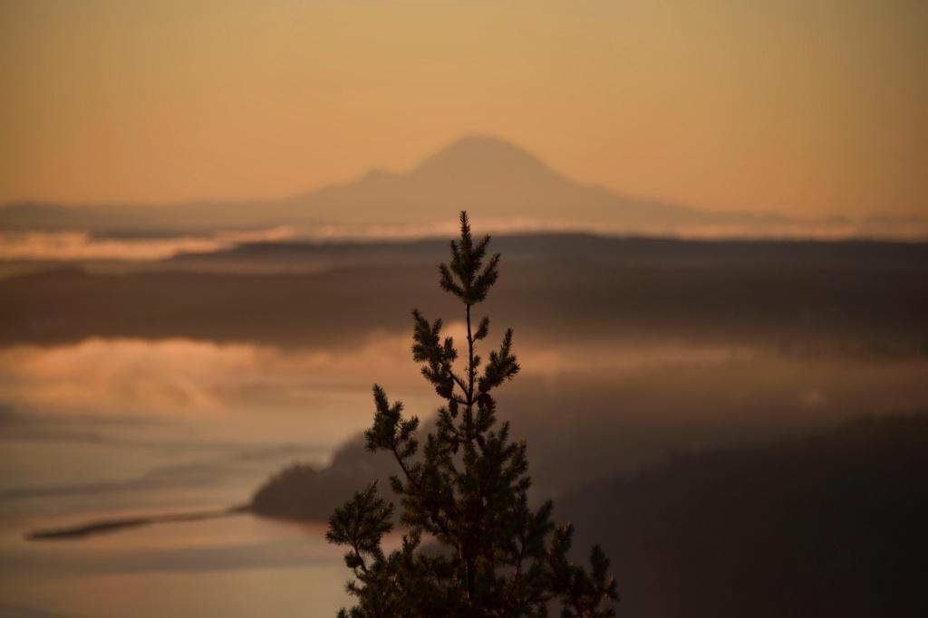 Rising up To Mt Rainier
