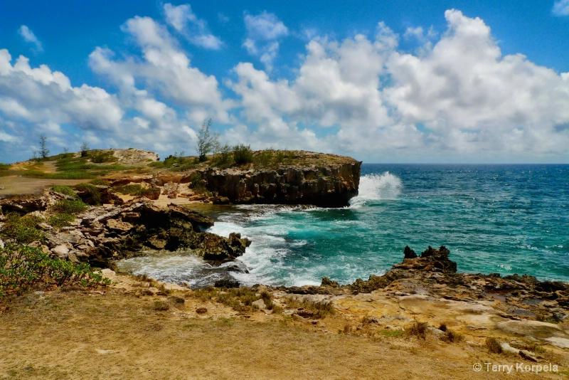 Scenic View in Kauai
