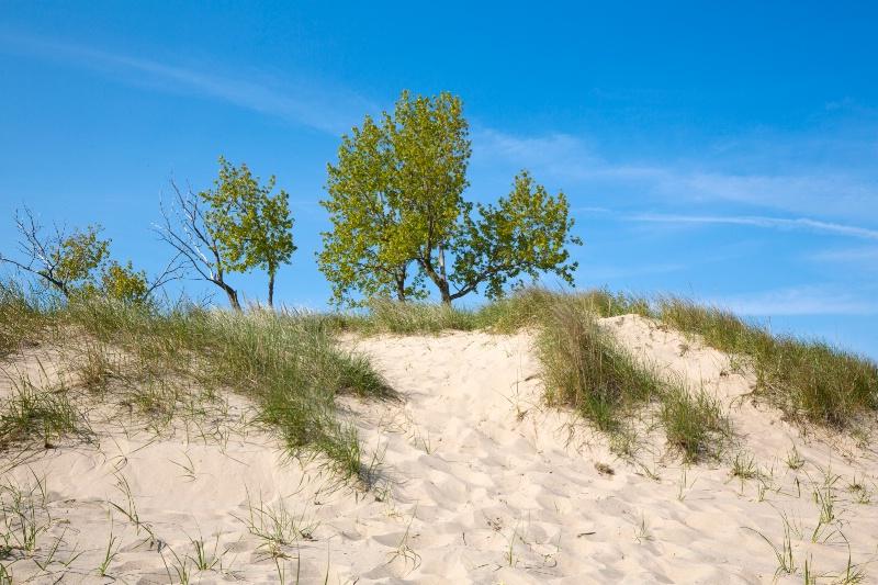 Dunes at Otawa Beach Park, Holland, Michigan #2