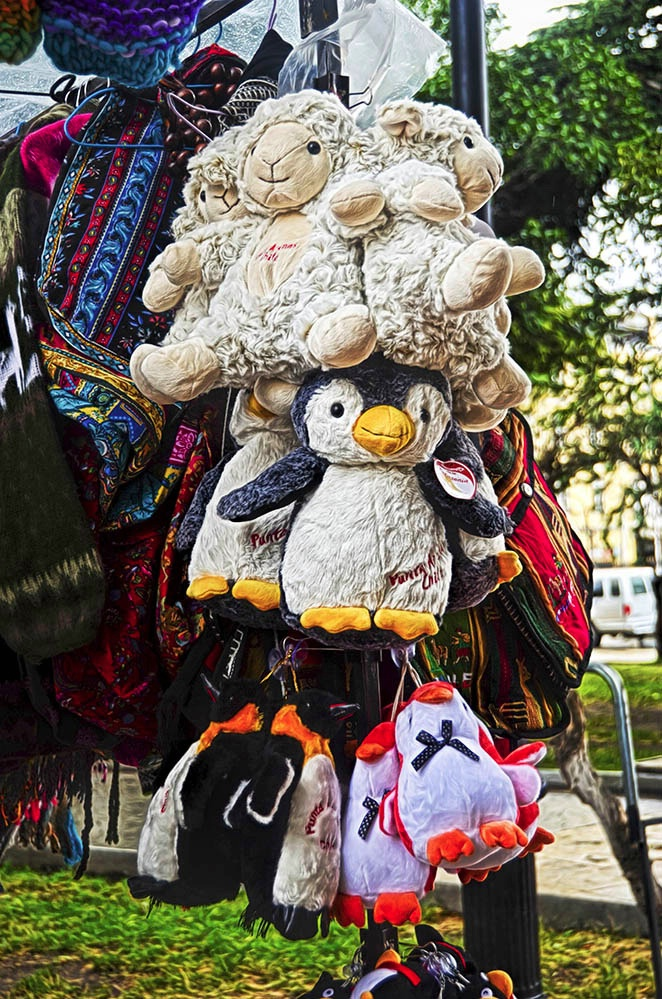 Punta Arenas Souvenirs