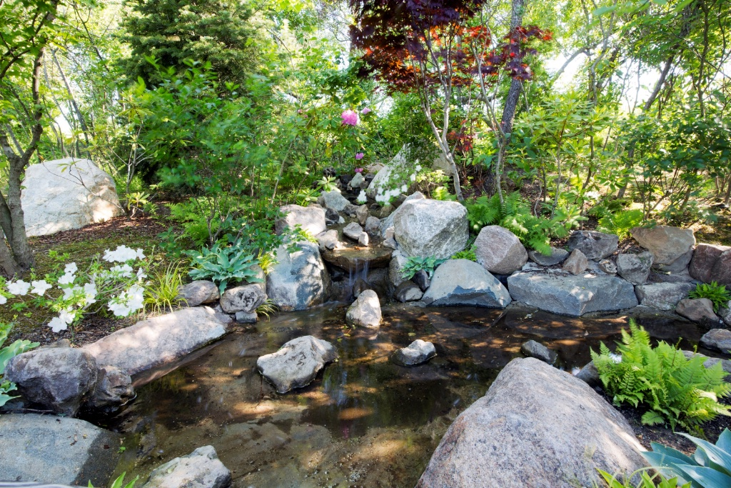 Stream Landscape #1