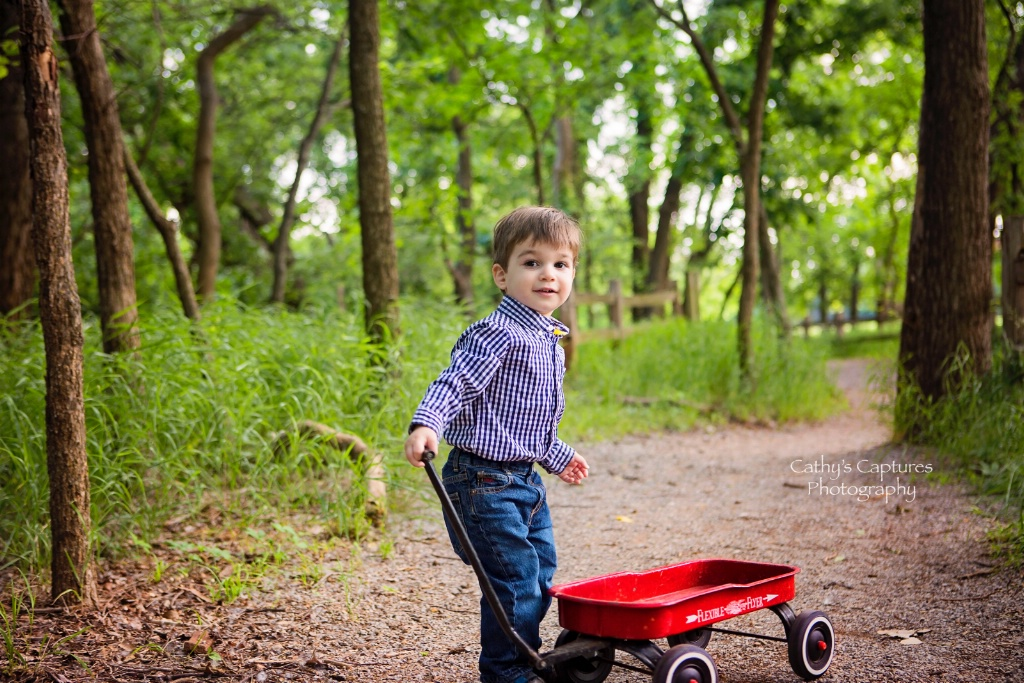 ~A Boy & His Little Red Wagon~
