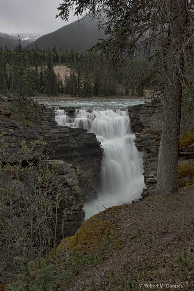 Attabasca Falls