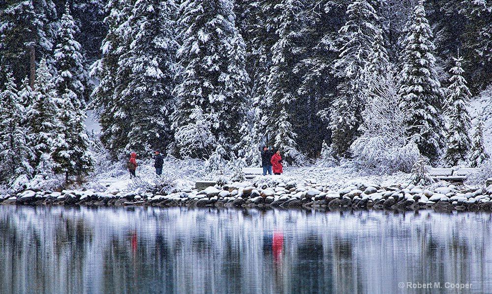 Snowy day - Lake Louise