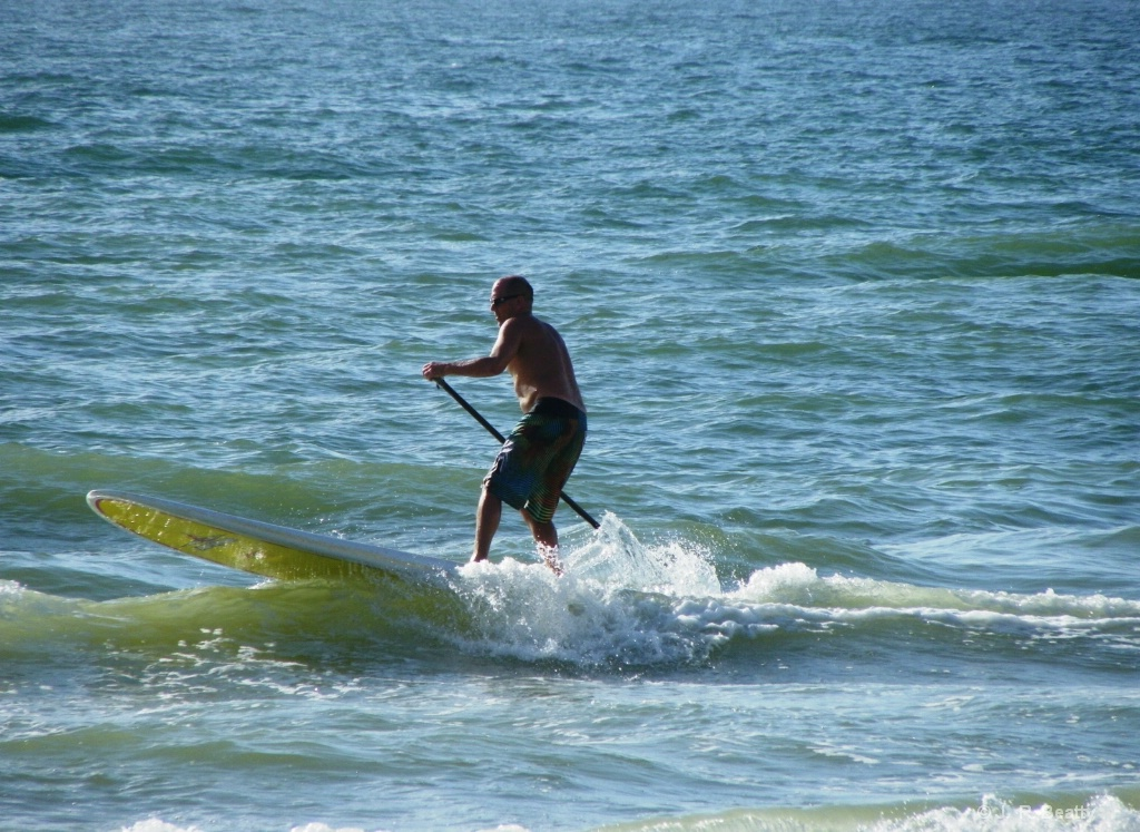 Gulf of Mexico Paddle Boarder