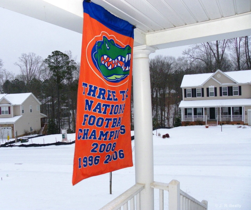 GATOR NATION <br>In & Out of THE SWAMP