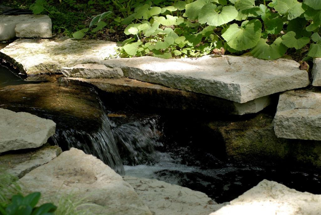 Stream at Lauritzen Gardens