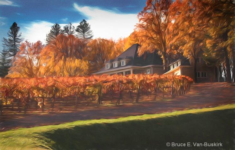 Boatique vineyard