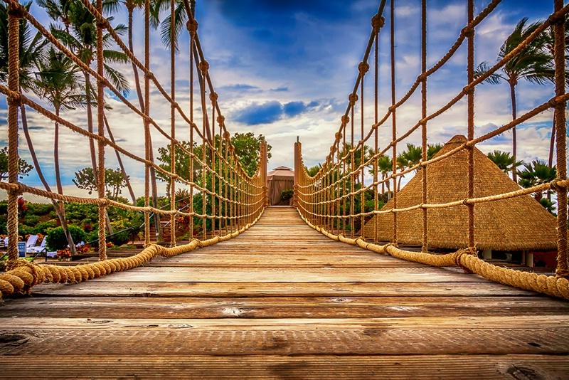--Walk This Way--