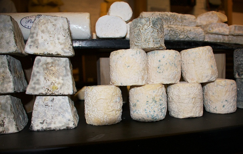 Gorgeous Cheese